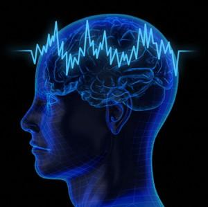 hear brain