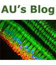 au-blog-thumbnail
